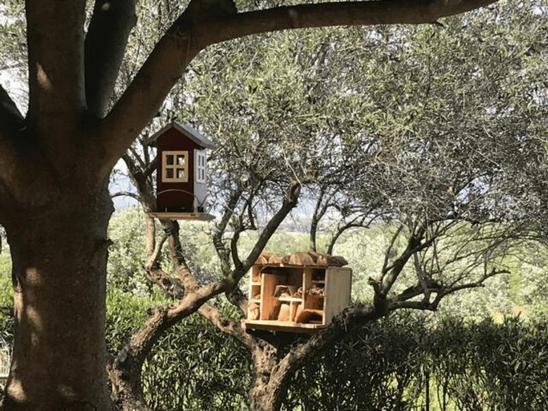 Gîte les Pousterles à Brignac - Hérault